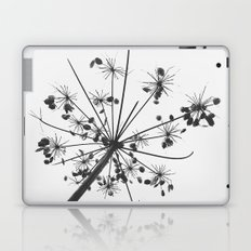 Simply lace Laptop & iPad Skin