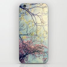 The Song of a Spring Sky iPhone & iPod Skin