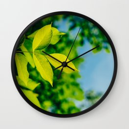 Fresh Green Tree Leaves In Summer, Tree Leaf, Intense Vivid Green, Nature In Summer, Environment Wall Clock