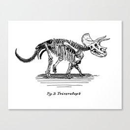 Figure Two: Triceratops Canvas Print