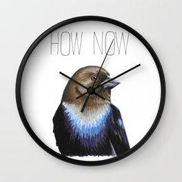 How Now Brown-headed Cowbird Wall Clock