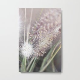 Softness Metal Print