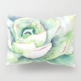 Succulent Plant 1 Pillow Sham