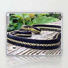 Garter Snake, High Park Gardens Laptop & iPad Skin