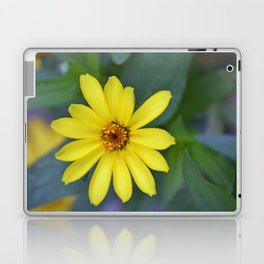 Yellow African Daisy Laptop & iPad Skin