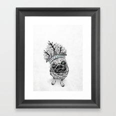 Indian Pug  Framed Art Print