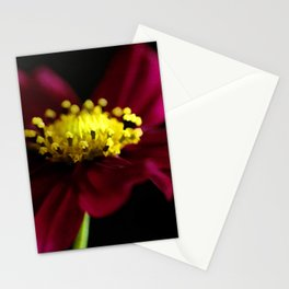 Elegance of a Cosmo Stationery Cards