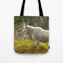 Old Beauty Tote Bag