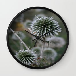 Macro Seed Head of Round Headed Garlic  Wall Clock