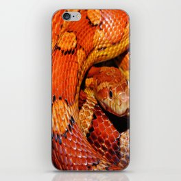 Constrictor iPhone Skin