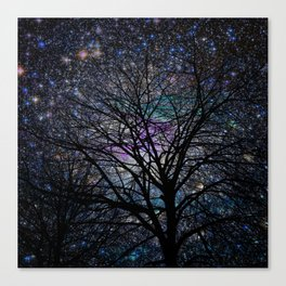 gorgeous darkness Canvas Print