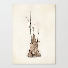 TOMS Foot Illustration  Canvas Print