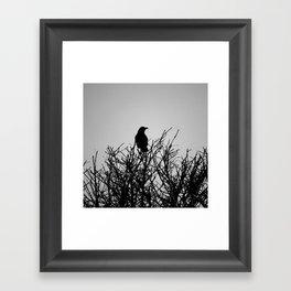 Black Watch Framed Art Print