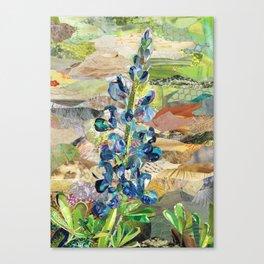 Texas Bluebonnet Collage Canvas Print