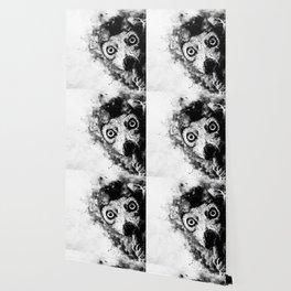 maki lemur ape ws bw Wallpaper