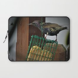 Determined Starling Laptop Sleeve