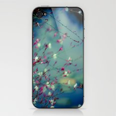 Monet's Dream iPhone & iPod Skin