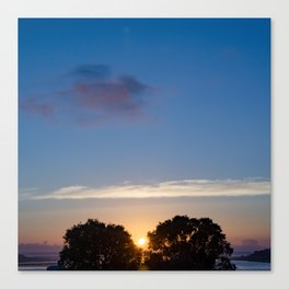 Sunset Between Trees Canvas Print