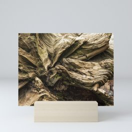 Sequoia Abstract, No. 1 Mini Art Print
