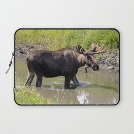 Moose standing in the water Laptop Sleeve