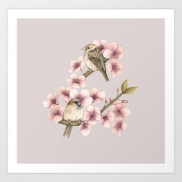 Sparrows in blossom  Art Print