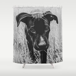 Doggy in the Field // B&W Hiking by Rustic Abandoned Log Cabin Summit Colorado Shower Curtain