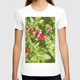 Busy bee in the flowers T-shirt
