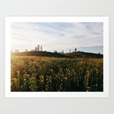 Chicago from Northerly Island Art Print