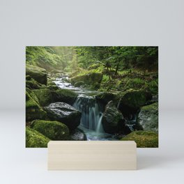 Flowing Creek, Green Mossy Rocks, Forest Nature Photography Mini Art Print