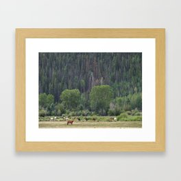 Happy Hour on the Ranch Framed Art Print