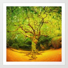 Golgotha Tree Art Print
