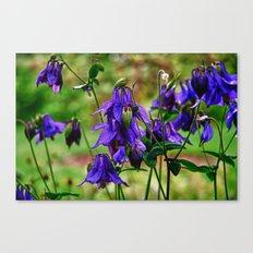 Purple Petals in the Rain Canvas Print