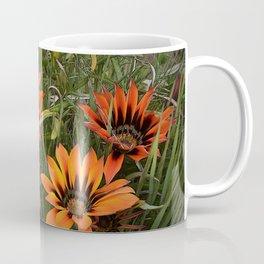 Orange and Black Gazanias Coffee Mug