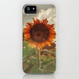 Golden Sunflower Sunsets iPhone Case