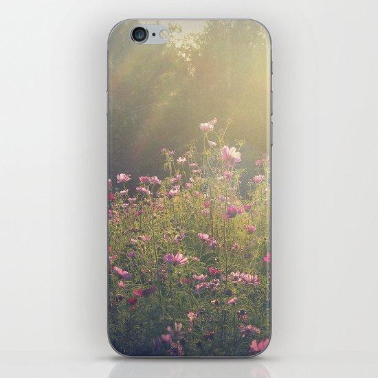 Cosmos in the Late Day Sun iPhone & iPod Skin
