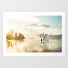 That Wanaka tree Art Print