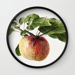 Vintage apple Wall Clock