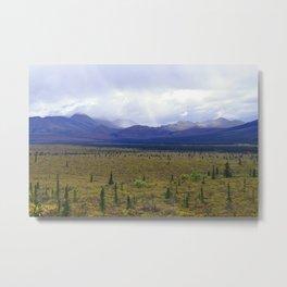 Teklanika River Valley, Denali Metal Print