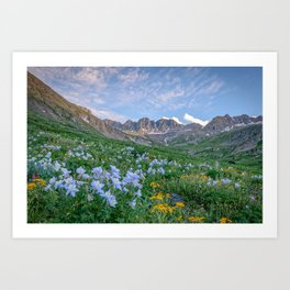 COLORADO HIGH COUNTRY MOUNTAIN SUMMER WILDFLOWERS LANDSCAPE PHOTOGRAPHY Art Print