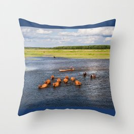 Natural bucolic view in Biebrza wetland Throw Pillow