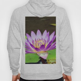 Water Lily Magic Hoody