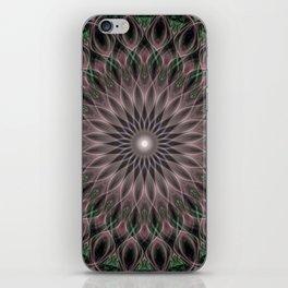 Pretty ornamented mandala iPhone Skin