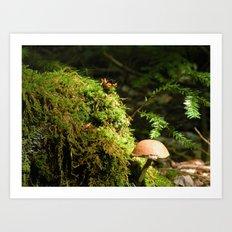 Mushroom chimney Art Print
