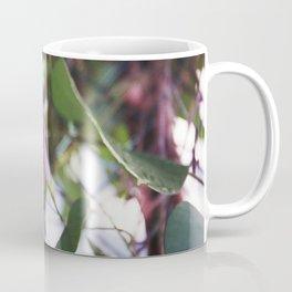 215//365 [v2] Coffee Mug