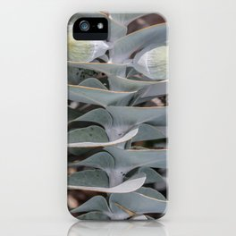 Gumnuts iPhone Case