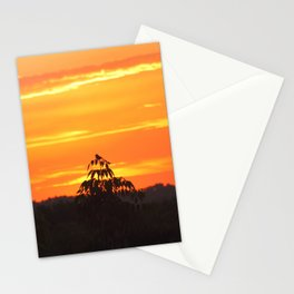 Red Sky Sunset with Red Robin Stationery Cards