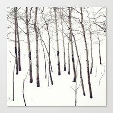 Walk in the White Lightning Wonderland of Winter Canvas Print