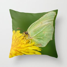 Brimstone Butterfly Throw Pillow