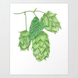 Beer Hop Flowers Art Print