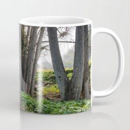 SDRV | Morning Mist Coffee Mug